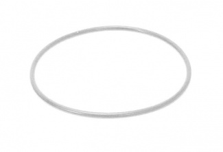 099748-1 GASKET strong